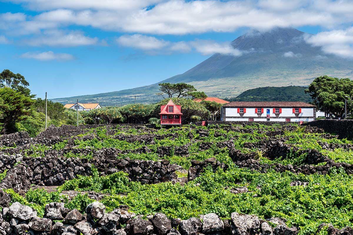 Circuit L'essentiel des Açores