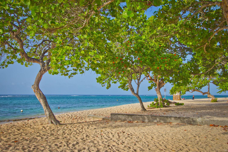 Residence tropicale avec location de voiture flex - Piscine tropicale france ...